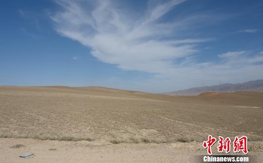 持续干旱致新疆北部草场大面积受