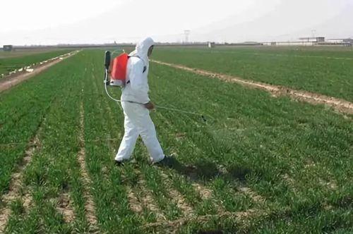 我国农药行业40年的发展与转型之路